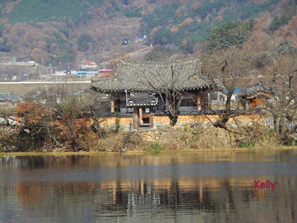 kellys-wiyangji-pond